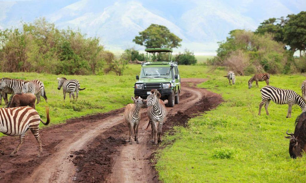 tanzania-adventure-tours