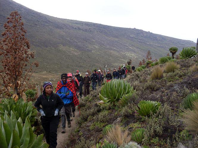 Mount Kenya Trek Naromoru Route 5 Days