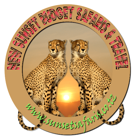 Sunset Safaris and Travel