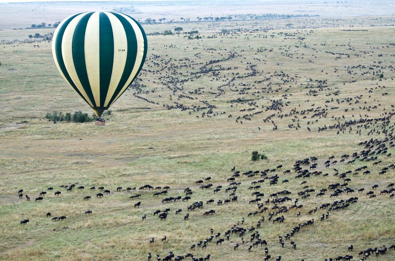 Balloon Safaris in Serengeti